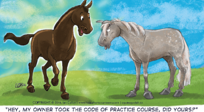 Equine Welfare – Canada's Code