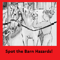 Spot the Barn Hazards