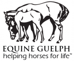 Equine Guelph