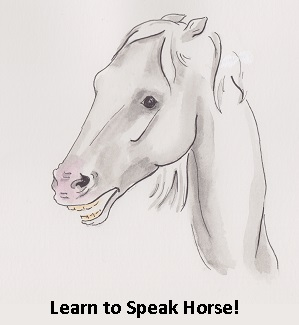 Learn to Speak Horse