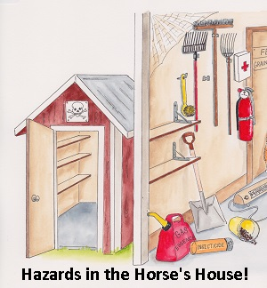 Hazards in the Horse's House!