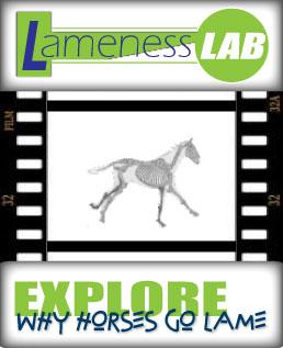 Lameness Lab