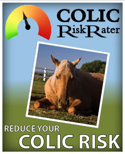 Colic Risk Rater