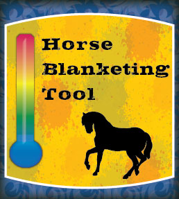 Horse Blanketing Tool