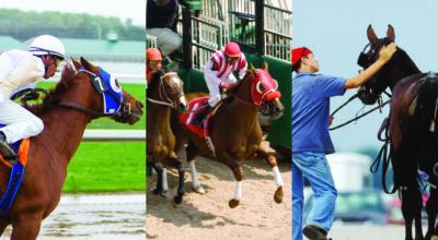 Racehorse Respiratory Health  – Spring '21