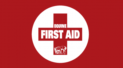 Equine First Aid – Winter '21