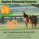 Equine Financial Futures Webinar Ad
