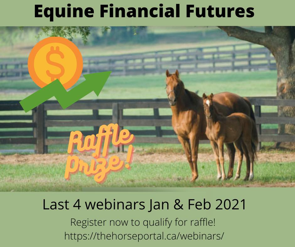 Equine Financial Futures webinar series ad