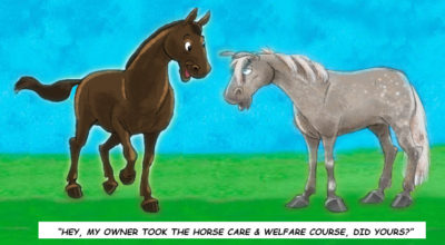 Horse Care & Welfare – TBA 2021
