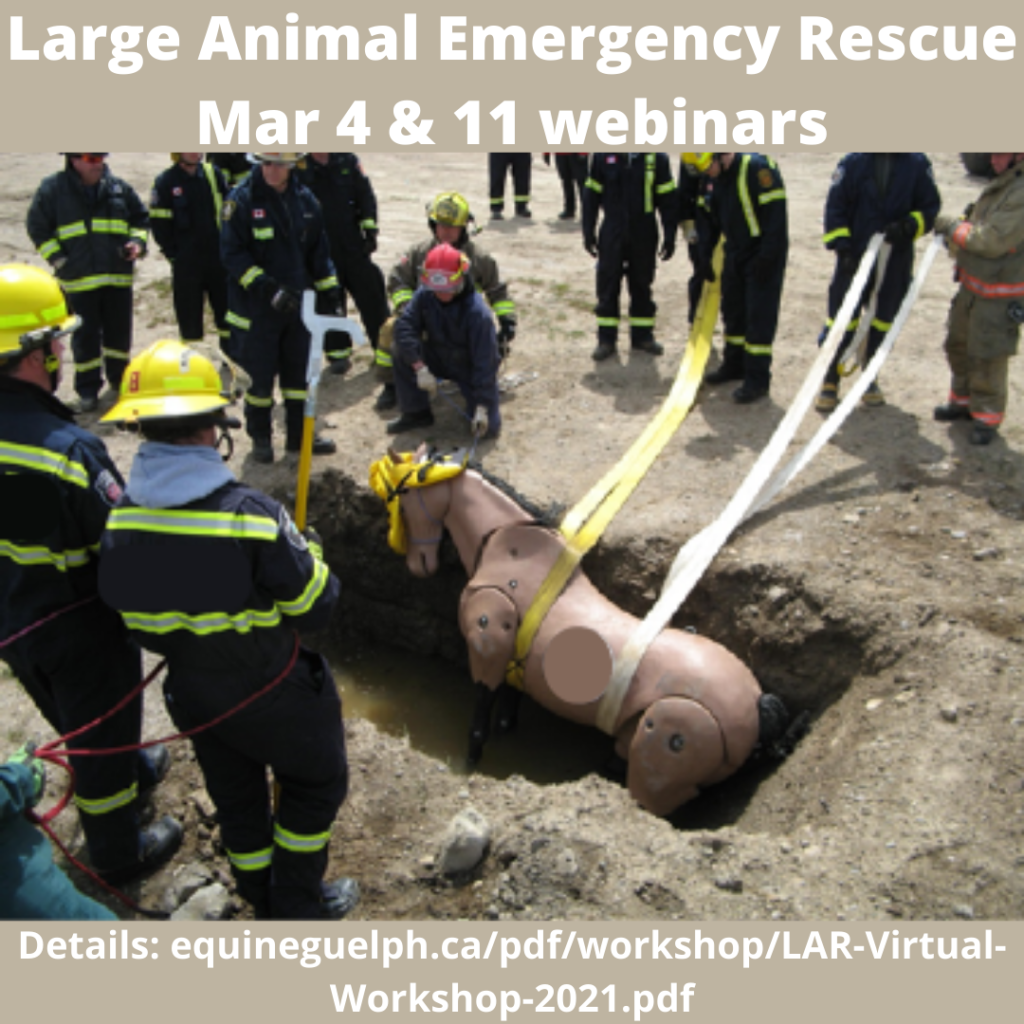 Large animal emergency rescue graphic