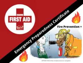 Fire prevention and First aid graphic